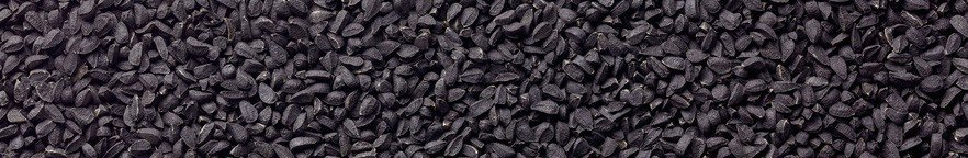 Black Seed Facial Exfoliating Cleansing Bar